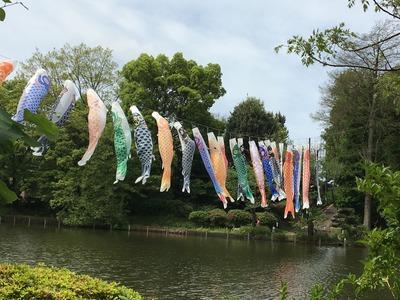 善福寺公園IMG_0602