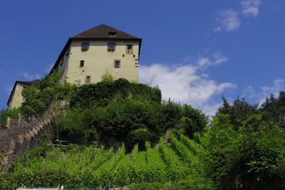 オーストリア フェルトキルヒ 旅行記IMGP3754