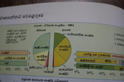 IMGP4209