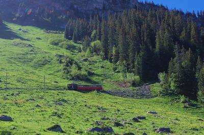 スイス旅行記
