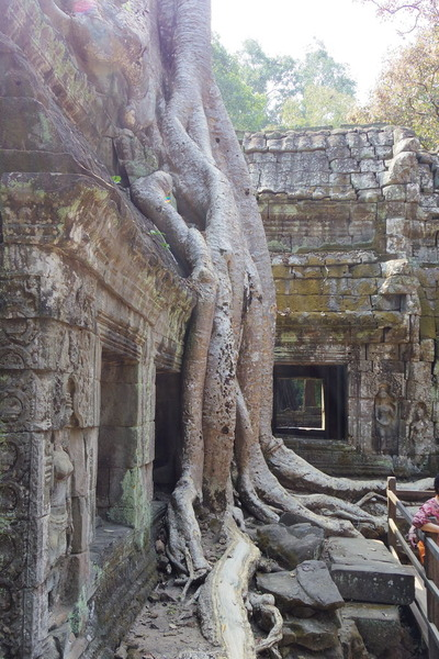 タ・プローム カンボジア シェムリアップIMGP5091