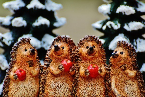 winter-hedgehog-apple-cute-sweet-fig-wintry-deco-2