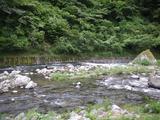 河鹿の湯(静岡県伊豆市湯ヶ島)