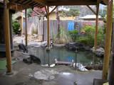 七沢荘の露天風呂2