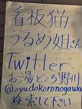 お湯どころ野川(東京都狛江市東野川)