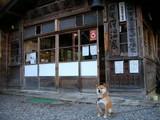 日光沢温泉(栃木県日光市)