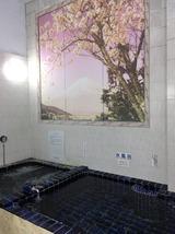 荻窪ラドン・サウナセンター(東京都杉並区桃井)
