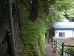 世古の湯(静岡県伊豆市天城湯ヶ島)