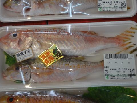 沖縄県産の魚