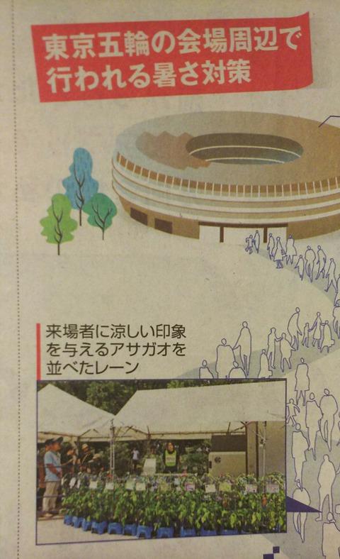 東京五輪会場、暑さ対策
