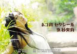 原紗央莉_PC_004_4