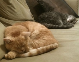 Tab & Chobby 2011