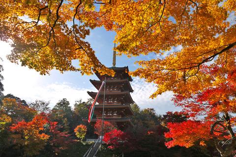 京都nariaiji1