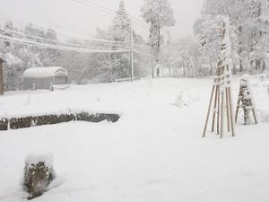 ホワイトクリスマス(at Samizu acoustics)