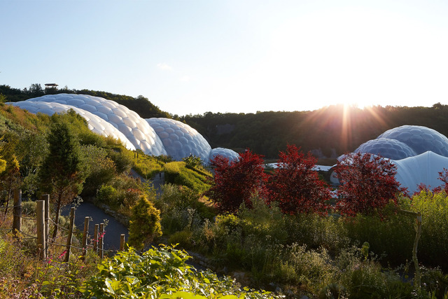 biomes-sunrise-eden-project-2015-©Hufton+Crow-032_0