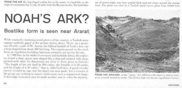 arklife1