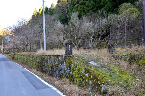 101208滋賀「大萩」10
