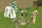 岩とニワトリ