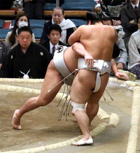 貴ノ岩十両15日間の戦い