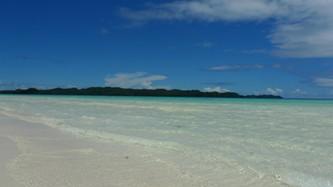 beach!beach!beach!