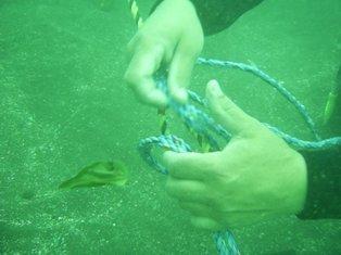 ロープとロープで縛ります