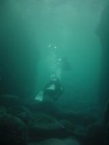 岩地・ビーチダイビング