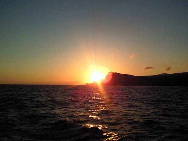 利島1 (4)