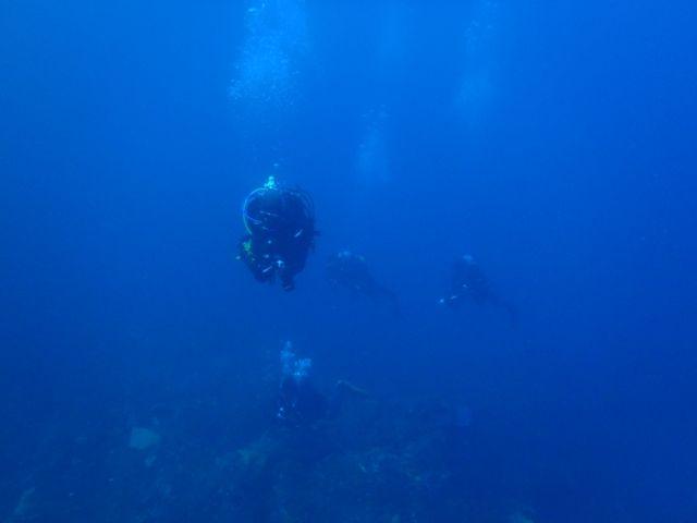 利島1 (7)
