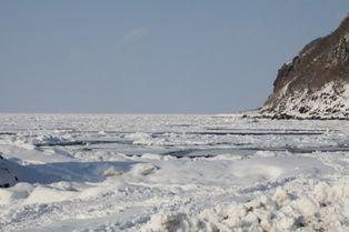 今日も良い氷です