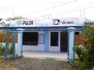 D-DOWN