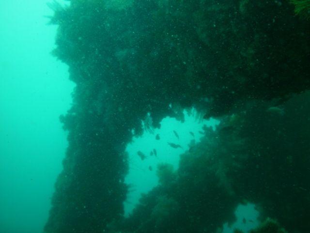 岩ボート (11)