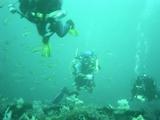 漁礁の上を行くディープな面々・・・