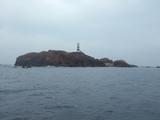 これが神子元島!