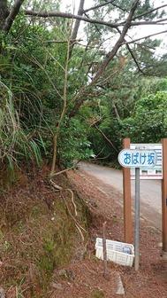 2019-2020久米島_200112_0014