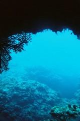 洞窟を抜けるとそこは。。。。(◎o◎)!