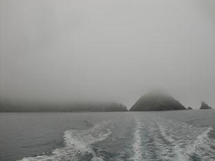 霧が・・・。