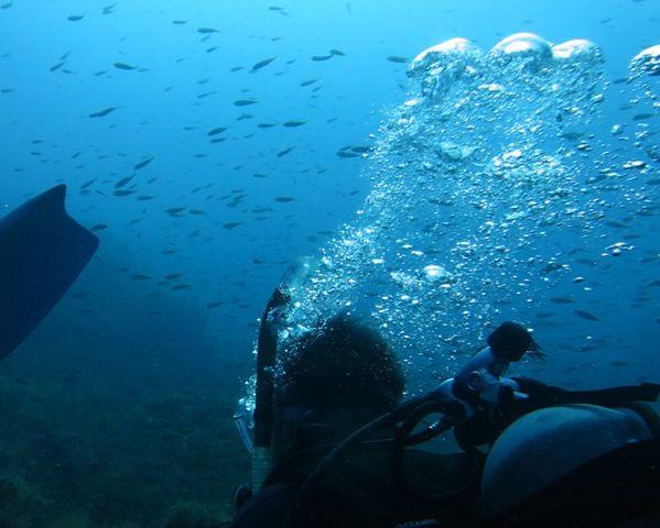 流れる漁礁 (2)