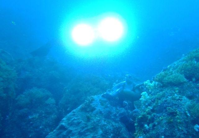利島2 (8)