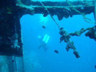 リロアン沈船堪能中
