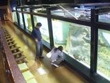 真鶴水族館??