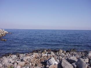 江の浦 002