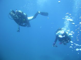水中遊泳〜!