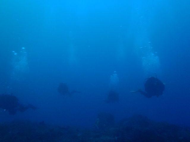 利島2 (6)