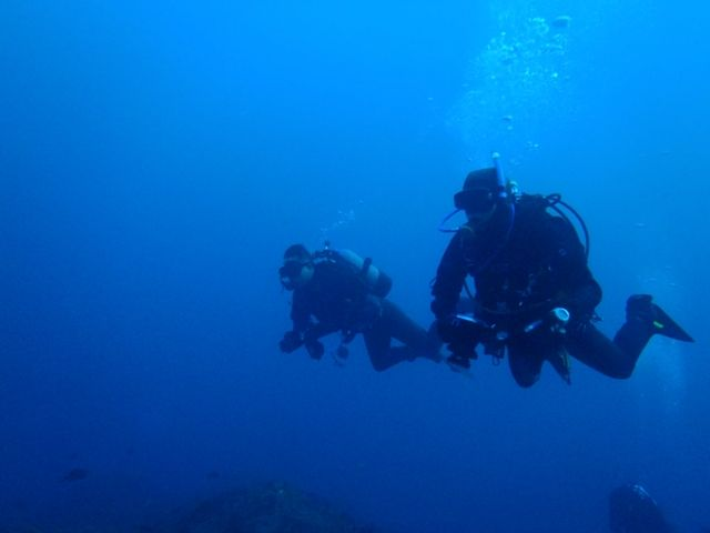 利島2 (7)