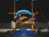 イルカに乗ってます〜