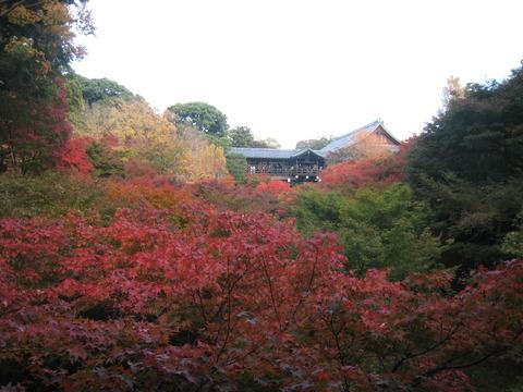 IMG_1365東福寺