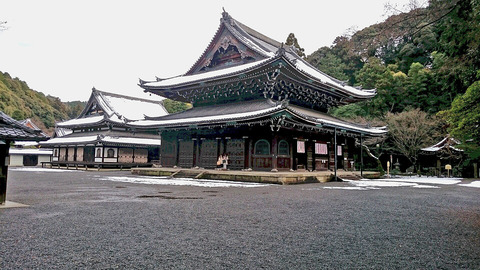DSC_0540泉涌寺