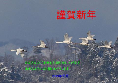 F00A6439年賀