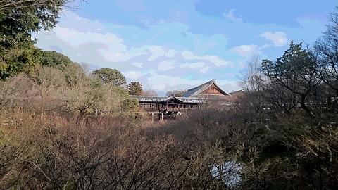 DSC_0520東福寺通天橋