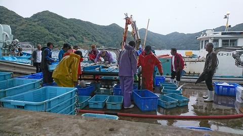 漁港DSC_0102